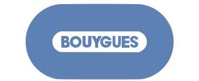 Bouyuegs