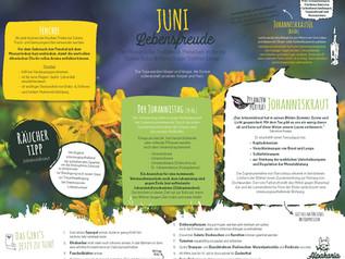 KalenderALPAKARIA_webvorschau8.jpg