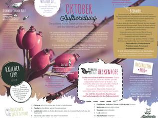 KalenderALPAKARIA_webvorschau12.jpg