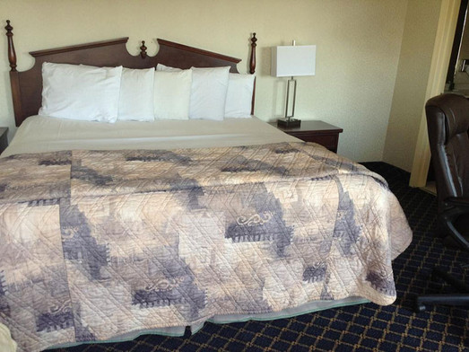Guest room with one king bed