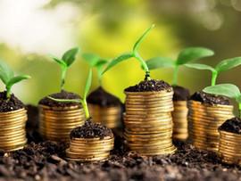 """Что такое """"зеленые"""" облигации и стоит ли в них инвестировать прямо сейчас?"""