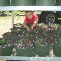 Our Kid's Farm