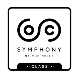 Class-Logo.png