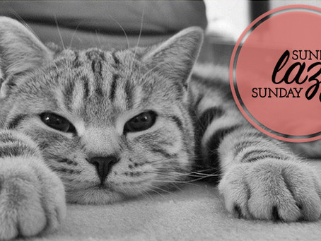 Sunday, lazy Sunday