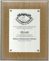 Partnerships in Education Award 2010-201