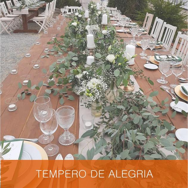TEMPERO DE ALEGRIA.jpg
