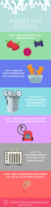 INFOGRAPHIC - Freeze Dry.png