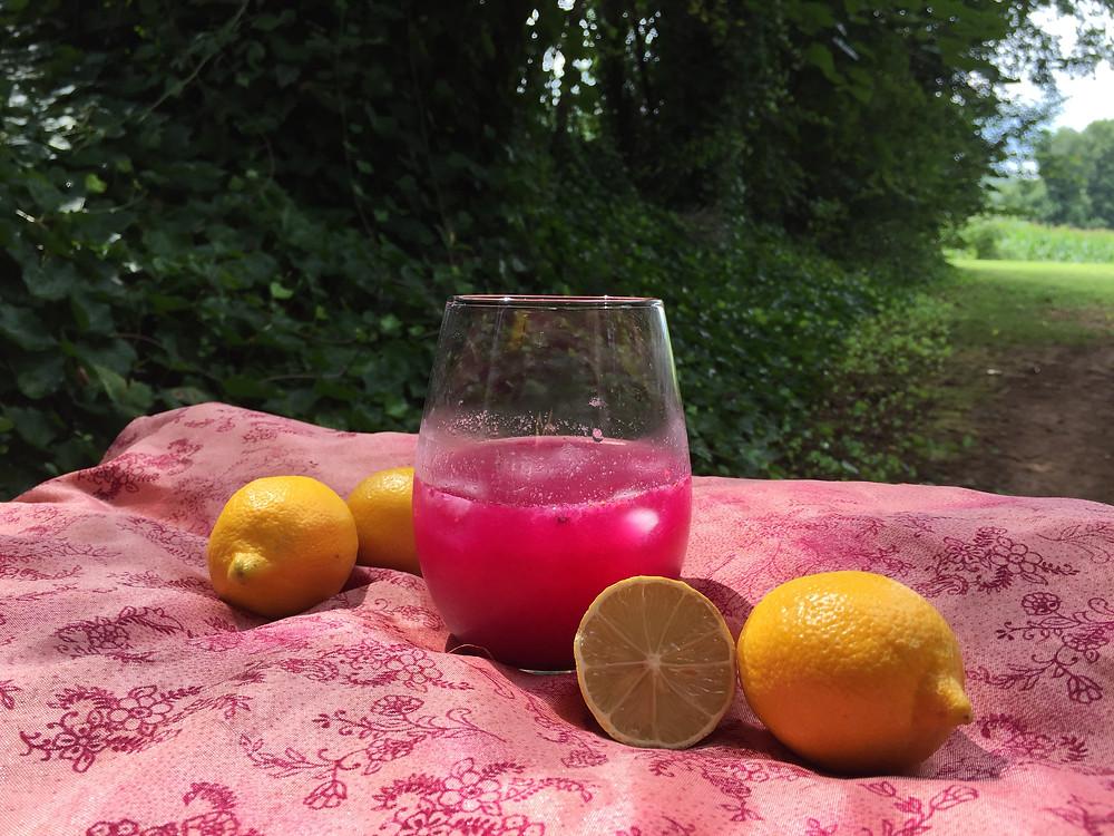Terra Powders Original Recipe For Dragon Berry Powder Pink Lemonade Drink With Fresh Lemons