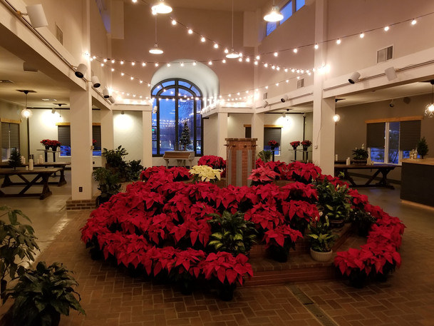 d41-event-space-poinsettia-fountain