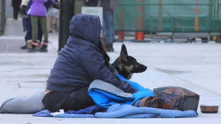 Una persona sin techo junto a su mascota en una calle de Montreal. (Michael Charles Cole/CBC)