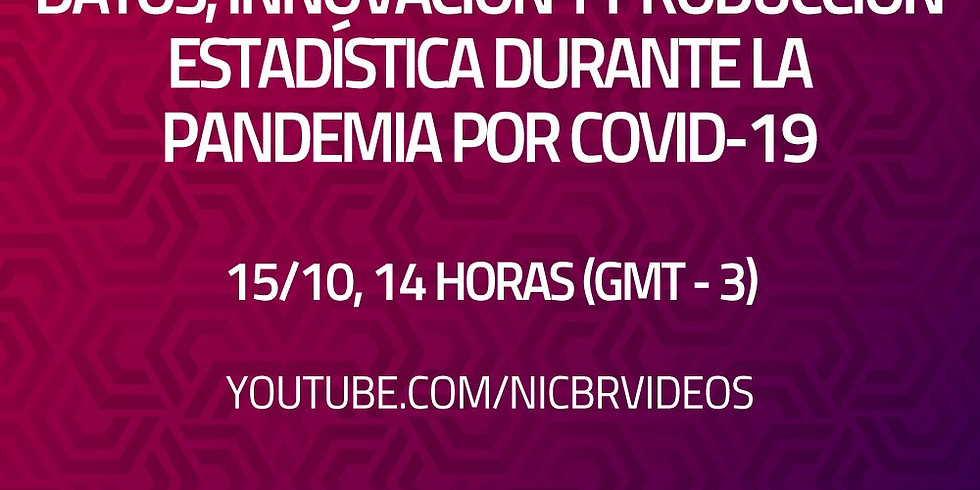 """Webinar """"Data, Innovation and Statistical Production during the COVID-19 Pandemic"""""""