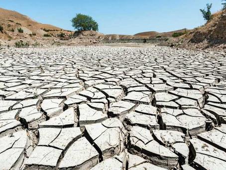 Inteligencia Artificial contra el cambio climático