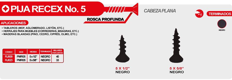 RECEX 5-01.jpg