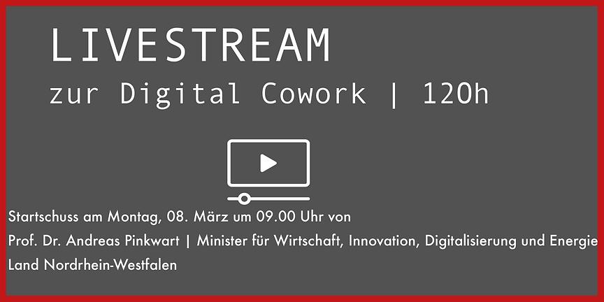 livestream_vorschau.png