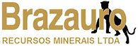 brazauro - blossom consult - clientes.png
