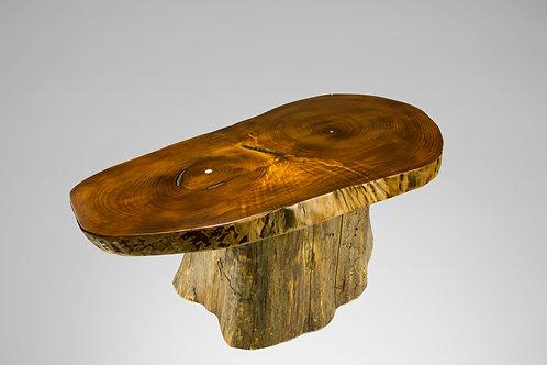 Paulownia Coffee Table with Cedar Stump