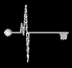 Youth Basketball Training
