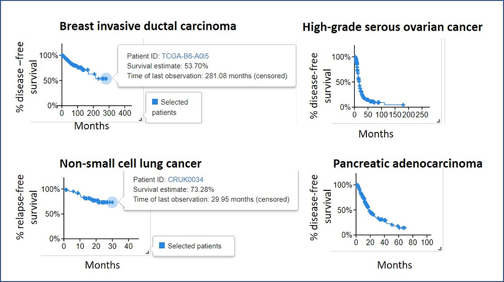 Survival rates of breast cancer, serous ovarian caner, non-small cell lung cancer and pancreatic cancer.
