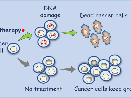 Chemotherapy - how does it work?