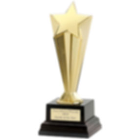0056437_recognition-award-star-gold-trop