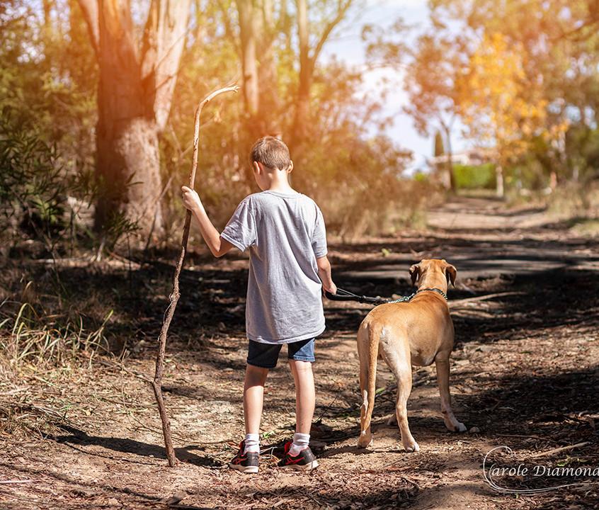 pet photographer miranda