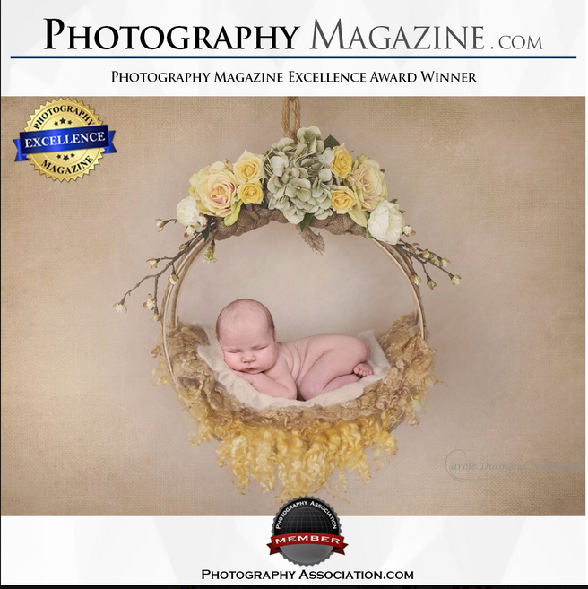 Newborn Photographer Sydney - Excellence Award Winner