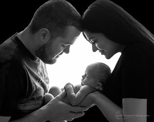 sutherland shire newborn photogapher