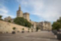 Palais_petit_palais_©empreintedailleurs-