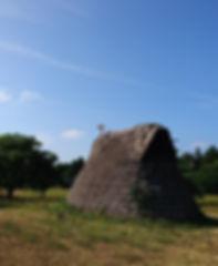 縄文公園.jpg