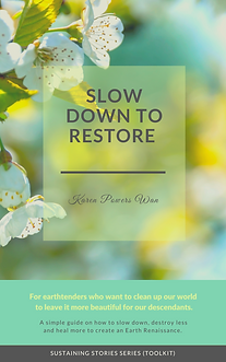 Slow Down to Restore Guide.png