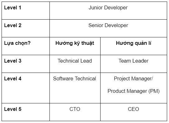 3 cấp độ phát triển sự nghiệp của Dev