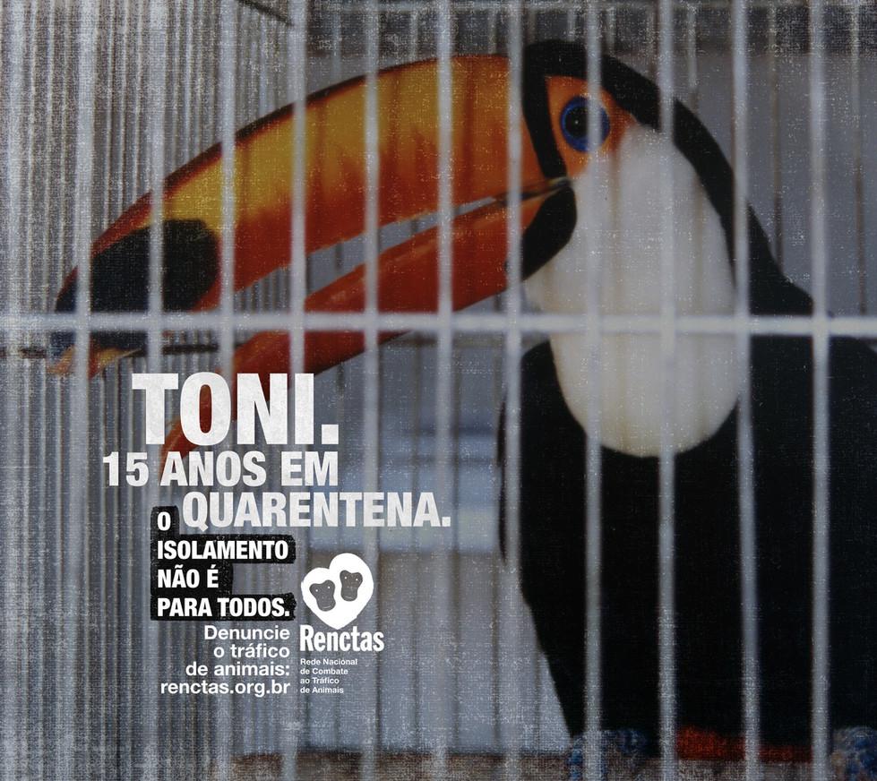 292x260-Toni.jpg