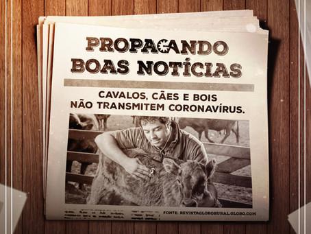 Propagando boas notícias: GA faz seleção de reportagens positivas durante a pandemia.