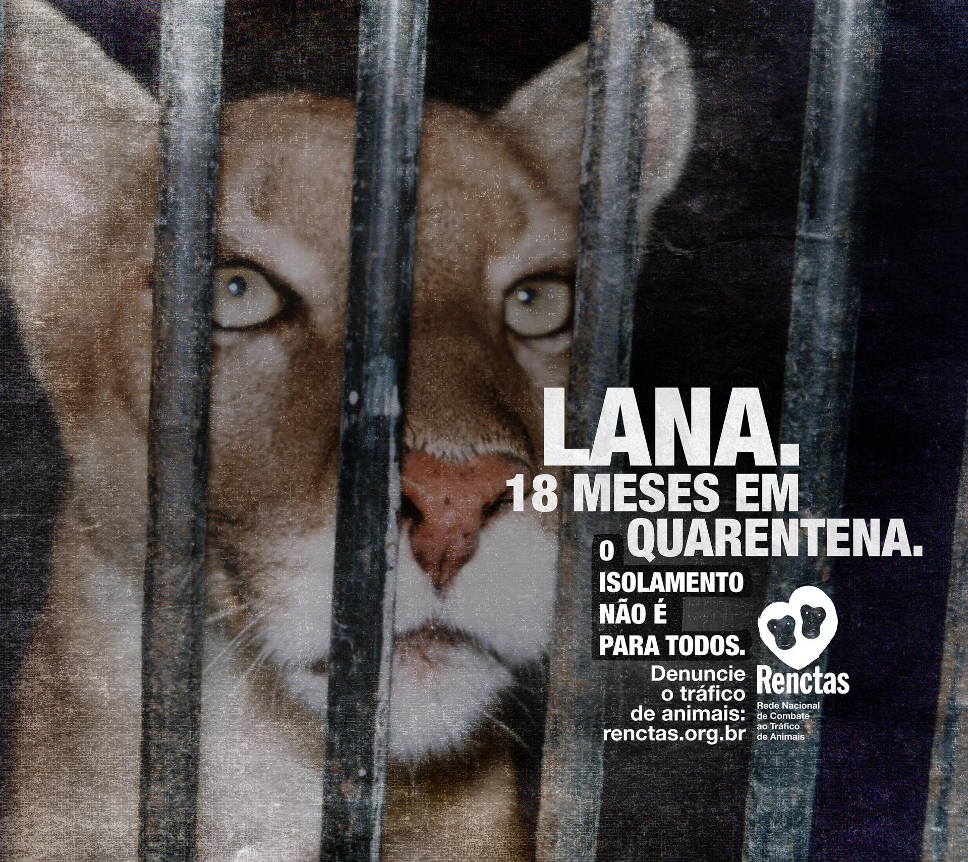 292x260-Lana-CCSP.jpg