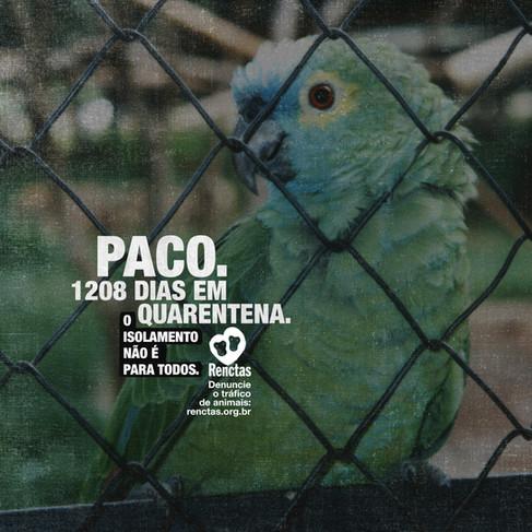 Post-Paco.jpg