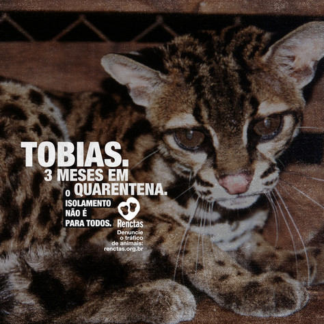 Post-Tobias.jpg