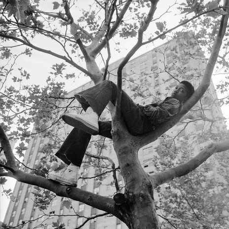 Reclining in tree by Goddard Riverside Community Center NY, 1978