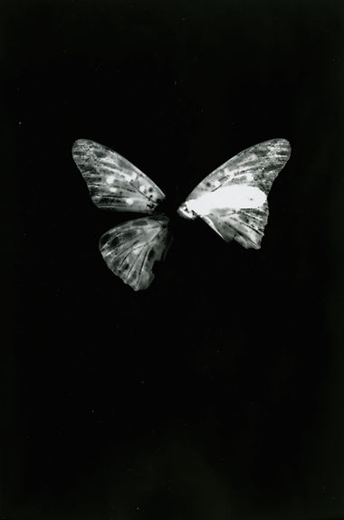 a-(1).jpg
