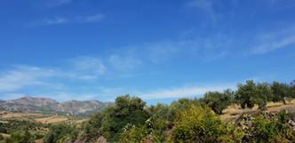 Views from Cortijo el Chenil