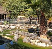 Torremolinos_-_Crocodile_Park.jpg