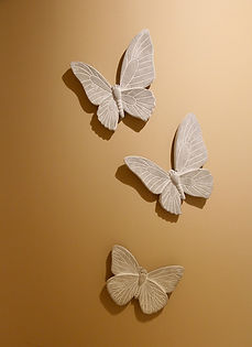 3papillons_edited.jpg