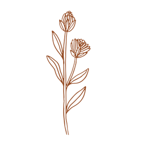Hand drawn floral 07.png