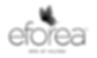 logo-eforea-small_edited_edited.png