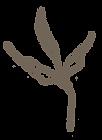 Leaf-6-PNG.png