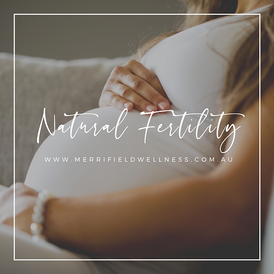 Natural Fertility Guide
