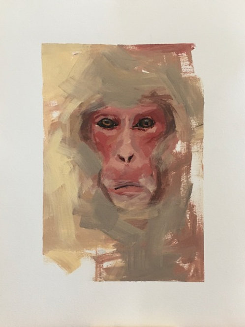 """Snow Monkey"" - Work on Paper"