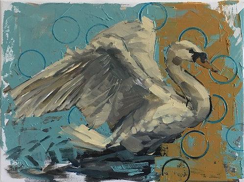 """""""Swan Study"""""""