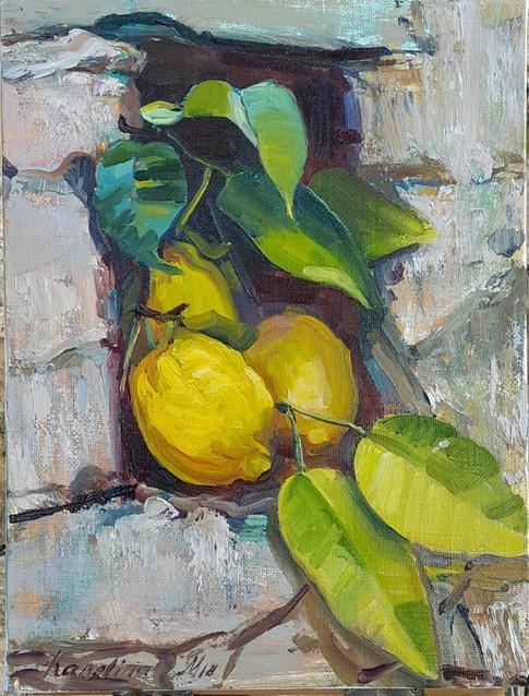Limoni, alla scoperta dell'Italia 2018