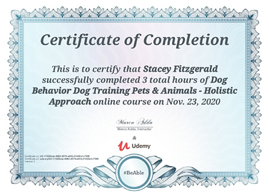 dog behavior cert.png