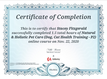 natural and holistic cert.png